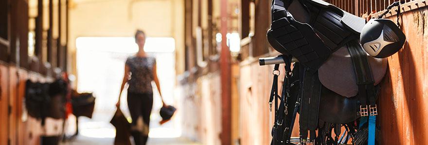 Pratiquer de l equitation quels equipements acheter
